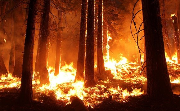 The number of wildfires, droughts, floods and other extreme weather events is growing each year