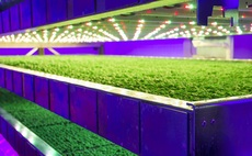 Ocado to plough £17m into vertical farming ventures