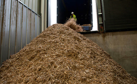 ETI launches project to clean up biomass impurities