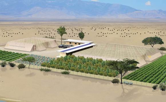 How greenhouses run on solar power and seawater could turn agriculture on its head
