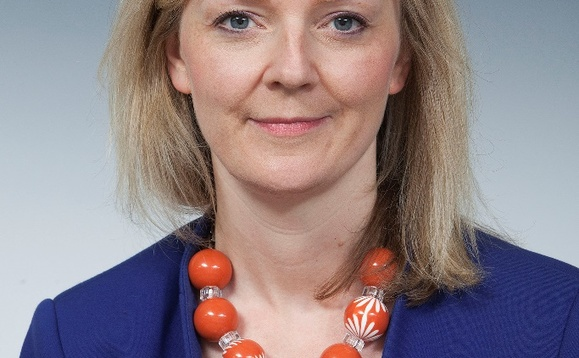 Liz Truss slams Michael Gove's plastic and air pollution policies