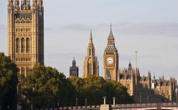 La Red de Medio Ambiente Conservador tiene 42 diputados y lores en su grupo parlamentario