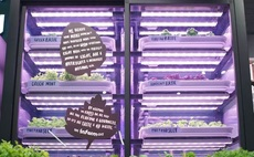 Freshly farmed in-store: M&S to grow herbs inside clutch of London shops