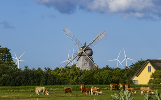 WRI calculates that technology can cut Denmark's agricultural emissions by 80% | Pictured: Fjerritslev, Denmark | Credit: iStock