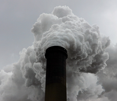 New corporate alliance aims to scale climate action, starting with carbon removal