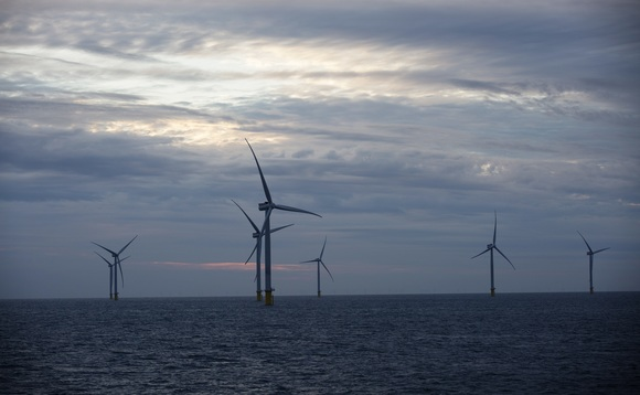 Orsted's Race Bank wind farm off the coast of the UK | Credit: Orsted