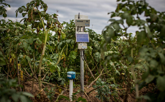 Solar-powered sensors help Walkers Crisps slice farm water and carbon use in half