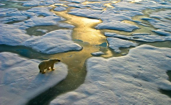 Climate change is still accelerating, transforming the planet's ecosystems and unleashing a cascade of impacts, an overview UN study has warned has warned