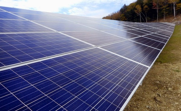 Founded in 2006, Nexamp has developed around 50MW of solar energy across the US northeast
