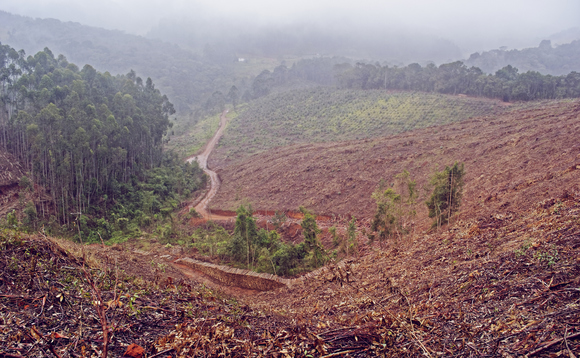 Farming and deforestation is threatening humanity's chances of averting dangerous climate change, scientists conclude | Credit: Eduardo Frederiksen