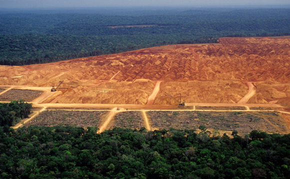 Deforestation in the Amazon and other tropical forests fuels the climate and biodiversity crises | Credit: iStock