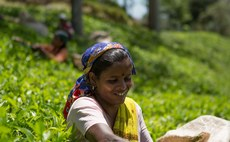 Fairtrade product sales hit record €8.5bn worldwide