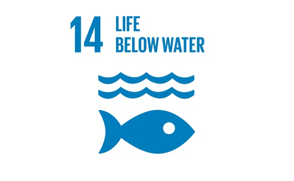 The BusinessGreen Guide to the SDGs: SDG14 - Life Below Water