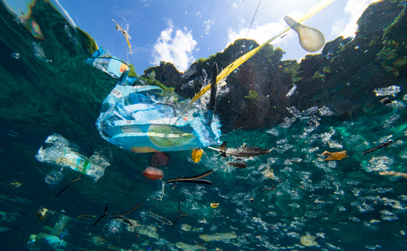 Consumer concern over plastic waste is still at fever pitch | Credit: Magnus Larsson