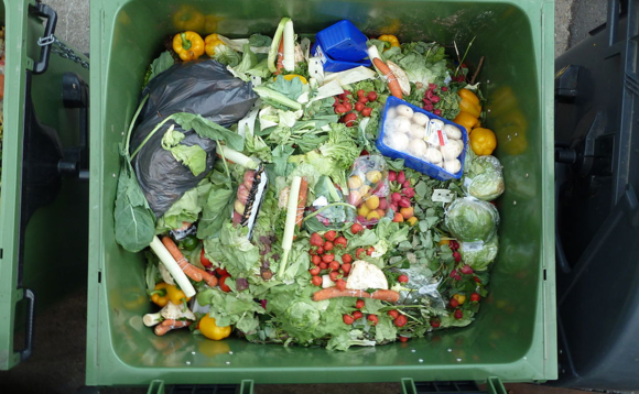 Household food waste could be used to generate green gas in the home
