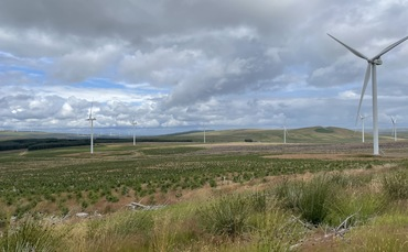Greencoat Snaps Up 36MW Andershaw Wind Farm From Statkraft For £120m - NewsBurrow thumbnail