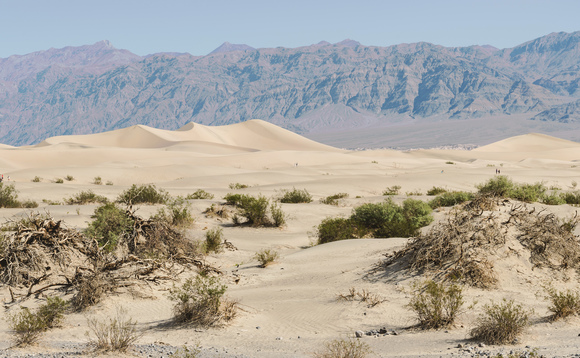 Death Valley in California may have set a record for the highest temperature ever recorded on earth
