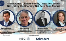 Net Zero Finance: Navigating the booming climate, green and transition bond market