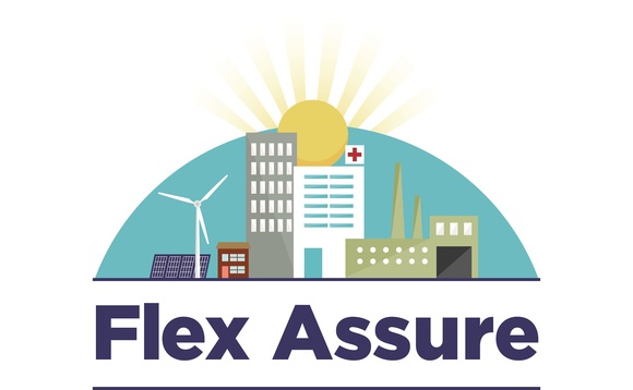 The new Flex Assure logo from the Association for Decentralised Energy