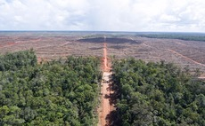 Palm oil firm accused of systematic illegal deforestation in Indonesia