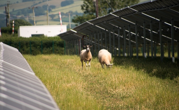UK heatwave helps solar power to record weekly highs