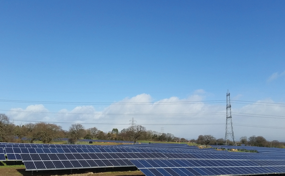Solar power's popularity remains sky high, survey reveals