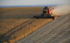 Soy Bonds: Financial facility eyes $1bn support for sustainable soy farming in Brazil