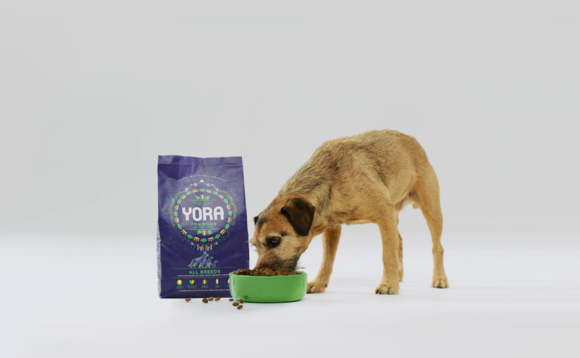 Yora dog food is made from insects | Credit: Yora