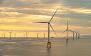 'Leading edge research': Crown Estate launches new push to assess environmental impact of offshore wind farms