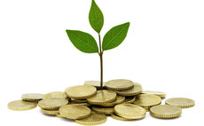 Green building society Ecology announces record profits