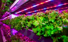Vertical farming: The potential climate benefits may stack up, but is it a distraction?
