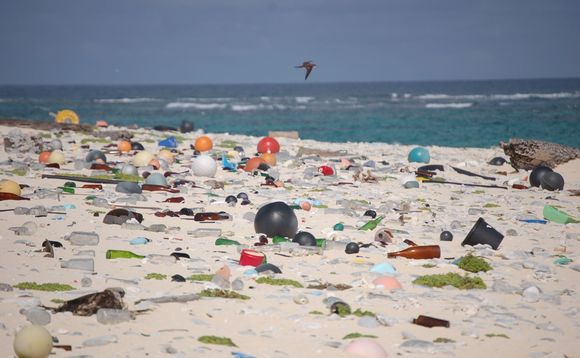 A beach in Hawaii strewn with ocean plastic | Credit: US Fish and Wildlife Service