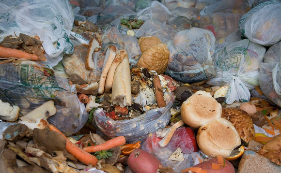 Progress on household food waste shudders to a halt