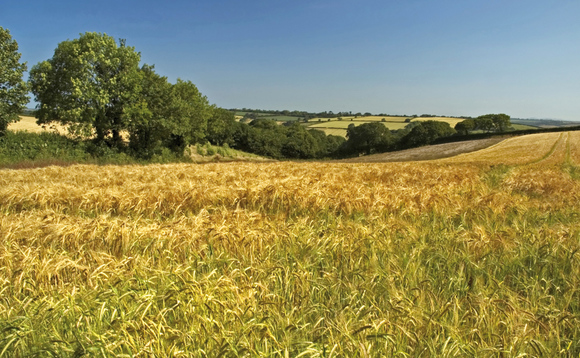CPRE urged the government to ensure the countryside economy was not left behind by the looming recession