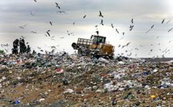 Government urged to act now to stop new materials leading to future landfill woes