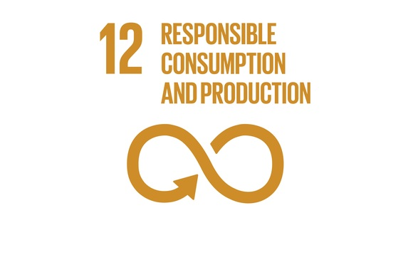 The BusinessGreen Guide to the SDGs: SDG12 - Responsible consumption and production