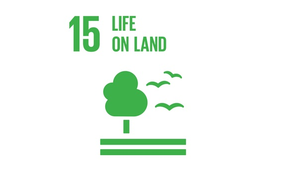 The BusinessGreen Guide to the SDGs: SDG15 - Life on Land