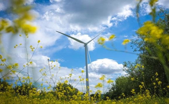 Triodos Renewables boosts green electricity production 19 per cent