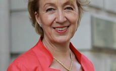Andrea Leadsom appointed environment secretary