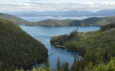 The Sealaska forest in Alaska is one of 50 projects developed by Finite Carbon | Credit: Finite Carbon