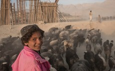 SDG1 Case Study: How Burberry is helping Afghan goat farmers cash in on cashmere