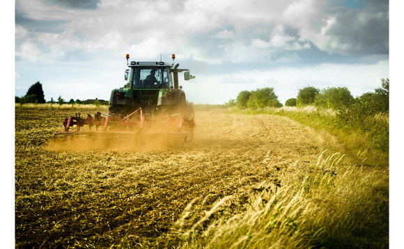 A fifth of UK farmland may need to shift towards natural climate solutions