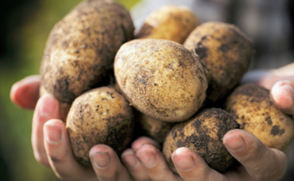 McDonald's is seeking boost resilience of its British potato supply chain to environmental degradation and climate impacts