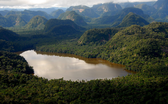 Carbon credits are helping safeguard the Cordillera Azul National Park in Peru | Credit: Ecosphere+
