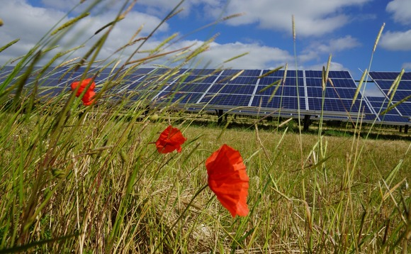 Just 9MW of new solar capacity was added in the UK between March and April | Credit: Juwi