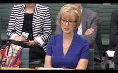 Andrea Leadsom insists 'clear path ahead' for renewables investors despite Brexit fears