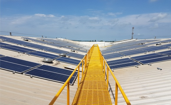 A Unilever solar array. Credit: Unilever