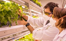 Vertical farmer LettUsGrow sets sights on commercial greenhouse market with new Harper Adams partnership
